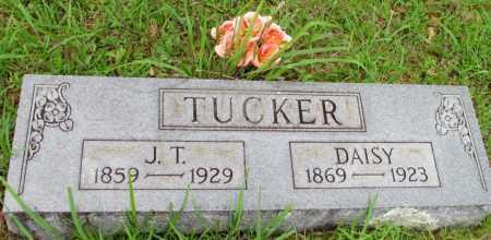 TUCKER, DAISY - Fulton County, Arkansas | DAISY TUCKER - Arkansas Gravestone Photos