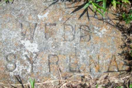 WEBB, SYRENA - Fulton County, Arkansas | SYRENA WEBB - Arkansas Gravestone Photos