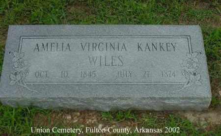 WILES, AMELIA VIRGINIA - Fulton County, Arkansas | AMELIA VIRGINIA WILES - Arkansas Gravestone Photos