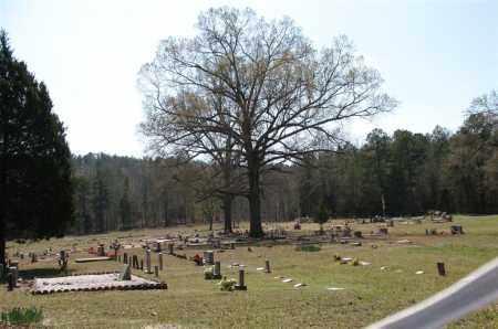*PEAK CEMETERY, OVERVIEW - Garland County, Arkansas | OVERVIEW *PEAK CEMETERY - Arkansas Gravestone Photos