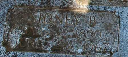 ADKINS, SIDNEY B. (CLOSE UP) - Garland County, Arkansas | SIDNEY B. (CLOSE UP) ADKINS - Arkansas Gravestone Photos