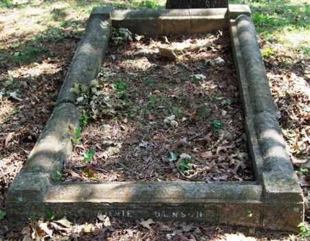 BENSON, ANNIE - Garland County, Arkansas   ANNIE BENSON - Arkansas Gravestone Photos