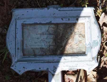 BREWSTER, LYDIA - Garland County, Arkansas | LYDIA BREWSTER - Arkansas Gravestone Photos