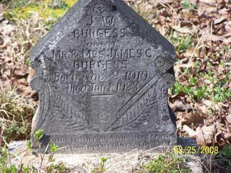 BURGESS, J. W. - Garland County, Arkansas | J. W. BURGESS - Arkansas Gravestone Photos