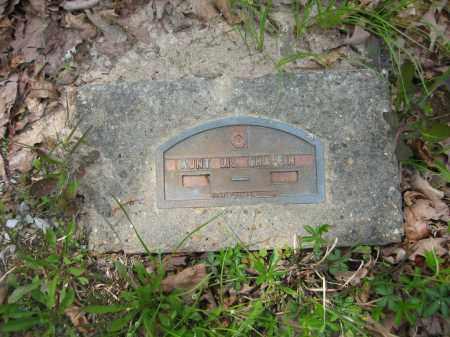 CHAFFIN, AUNT LIS - Garland County, Arkansas   AUNT LIS CHAFFIN - Arkansas Gravestone Photos
