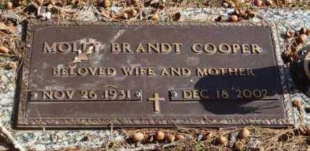 COOPER, MOLLY - Garland County, Arkansas | MOLLY COOPER - Arkansas Gravestone Photos