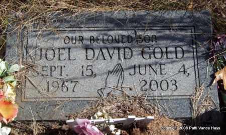 GOLD, JOEL DAVID - Garland County, Arkansas | JOEL DAVID GOLD - Arkansas Gravestone Photos