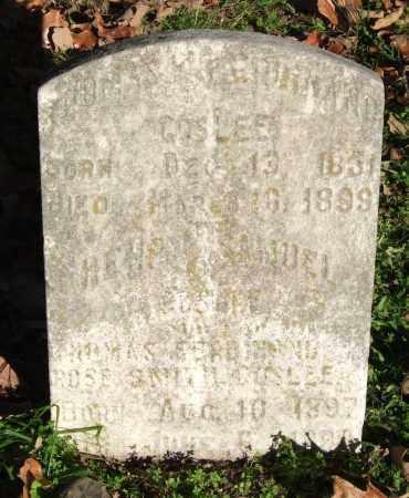 GOSLEE (PUBLIC SERVANT), THOMAS FERDINAND - Garland County, Arkansas | THOMAS FERDINAND GOSLEE (PUBLIC SERVANT) - Arkansas Gravestone Photos