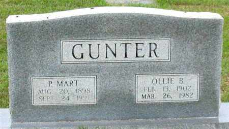 GUNTER, P. MART - Garland County, Arkansas | P. MART GUNTER - Arkansas Gravestone Photos