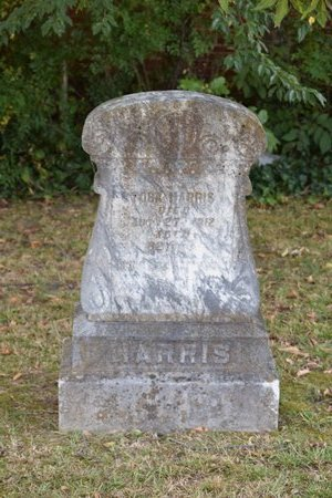 HARRIS, TOBA - Garland County, Arkansas | TOBA HARRIS - Arkansas Gravestone Photos