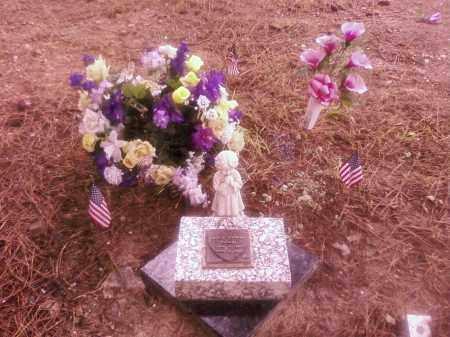HODGES, JAMYE LASHAE - Garland County, Arkansas | JAMYE LASHAE HODGES - Arkansas Gravestone Photos