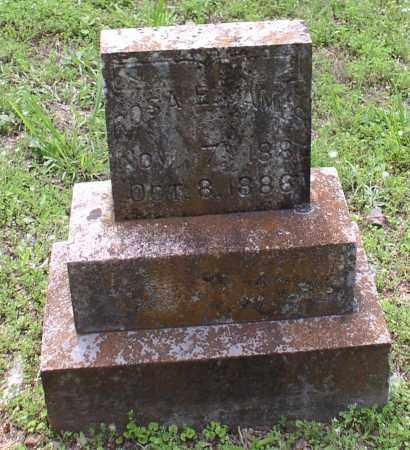JAMES, ROSA E. - Garland County, Arkansas | ROSA E. JAMES - Arkansas Gravestone Photos