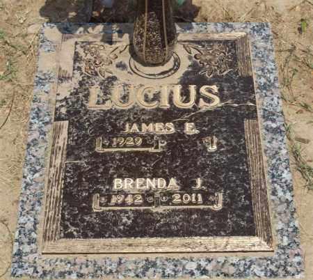 SELPH LUCIUS, BRENDA J - Garland County, Arkansas | BRENDA J SELPH LUCIUS - Arkansas Gravestone Photos