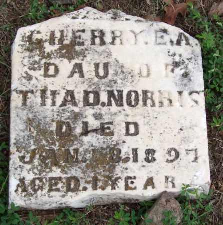 NORRIS, CHERRY E. A. - Garland County, Arkansas | CHERRY E. A. NORRIS - Arkansas Gravestone Photos