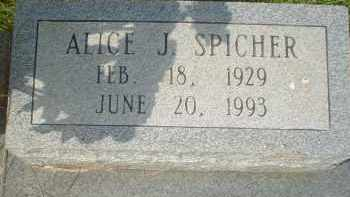 SPICHER, ALICE - Garland County, Arkansas | ALICE SPICHER - Arkansas Gravestone Photos