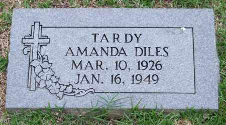 DILES TARDY, AMANDA - Garland County, Arkansas | AMANDA DILES TARDY - Arkansas Gravestone Photos
