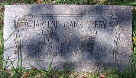 TERRY, CHARLENE - Garland County, Arkansas | CHARLENE TERRY - Arkansas Gravestone Photos