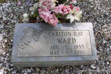 WARD, CARLTON RAY - Garland County, Arkansas | CARLTON RAY WARD - Arkansas Gravestone Photos
