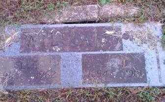 WILLIAMS, NELLIE - Garland County, Arkansas   NELLIE WILLIAMS - Arkansas Gravestone Photos