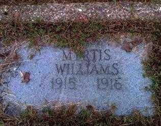 WILLIAMS, MYRTIS - Garland County, Arkansas | MYRTIS WILLIAMS - Arkansas Gravestone Photos