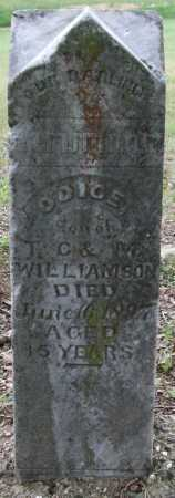 WILLIAMSON, ODICE - Garland County, Arkansas | ODICE WILLIAMSON - Arkansas Gravestone Photos
