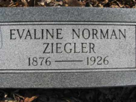 ZIEGLER, EVALINE - Garland County, Arkansas | EVALINE ZIEGLER - Arkansas Gravestone Photos