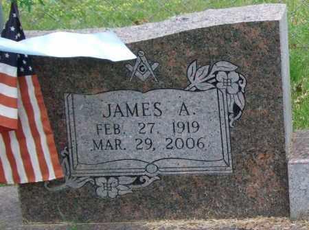 FORD, JAMES ARLIS (CLOSE UP) - Garland County, Arkansas | JAMES ARLIS (CLOSE UP) FORD - Arkansas Gravestone Photos
