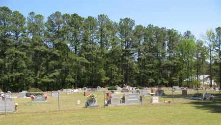 * CENTER GROVE CEMETERY VIEW,  - Grant County, Arkansas    * CENTER GROVE CEMETERY VIEW - Arkansas Gravestone Photos