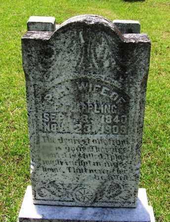 APPLING, P H - Grant County, Arkansas   P H APPLING - Arkansas Gravestone Photos