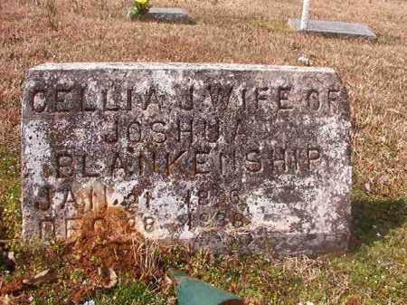 BLANKENSHIP, CELLIA J - Grant County, Arkansas | CELLIA J BLANKENSHIP - Arkansas Gravestone Photos