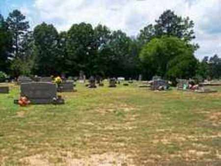 *DAVIS CEMETERY OVERVIEW,  - Grant County, Arkansas |  *DAVIS CEMETERY OVERVIEW - Arkansas Gravestone Photos