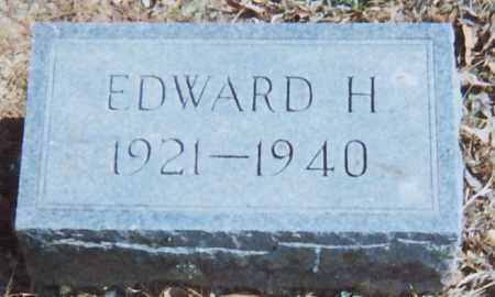 HICKS, EDWARD HARLAN - Grant County, Arkansas | EDWARD HARLAN HICKS - Arkansas Gravestone Photos