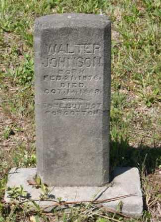 JOHNSON, WALTER - Grant County, Arkansas | WALTER JOHNSON - Arkansas Gravestone Photos