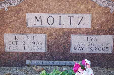 MOLTZ, EVA - Grant County, Arkansas | EVA MOLTZ - Arkansas Gravestone Photos