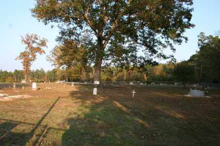 *PROVIDENCE CEMETERY OVERVIEW,  - Grant County, Arkansas |  *PROVIDENCE CEMETERY OVERVIEW - Arkansas Gravestone Photos