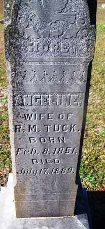 TUCK, ANGELINE - Grant County, Arkansas | ANGELINE TUCK - Arkansas Gravestone Photos