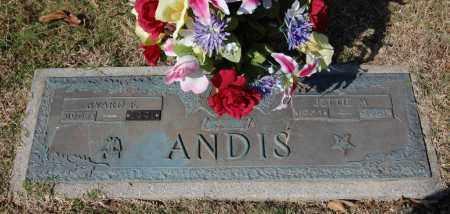 PIGUE ANDIS, JETTIE M. - Greene County, Arkansas | JETTIE M. PIGUE ANDIS - Arkansas Gravestone Photos