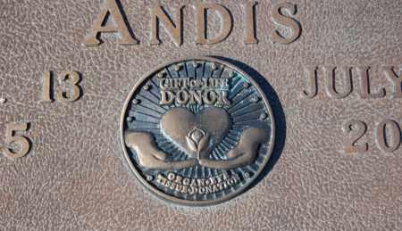 ANDIS, JOHN CECIL (CLOSEUP) - Greene County, Arkansas   JOHN CECIL (CLOSEUP) ANDIS - Arkansas Gravestone Photos
