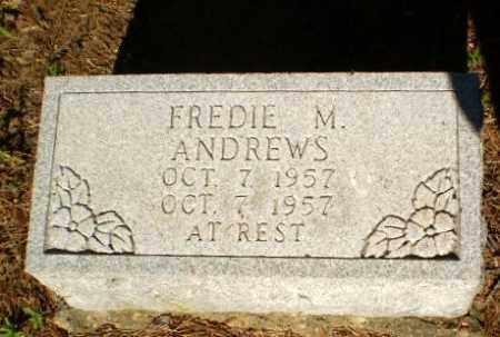 ANDREWS, FREDIE M - Greene County, Arkansas   FREDIE M ANDREWS - Arkansas Gravestone Photos