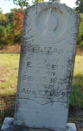 BELK, ELIZAR - Greene County, Arkansas | ELIZAR BELK - Arkansas Gravestone Photos