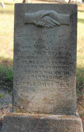 BELK, LUCIE A. - Greene County, Arkansas | LUCIE A. BELK - Arkansas Gravestone Photos