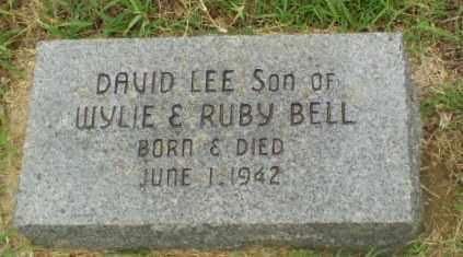 BELL, DAVID LEE - Greene County, Arkansas | DAVID LEE BELL - Arkansas Gravestone Photos