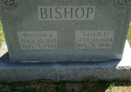 BISHOP, WILLIAM J - Greene County, Arkansas | WILLIAM J BISHOP - Arkansas Gravestone Photos