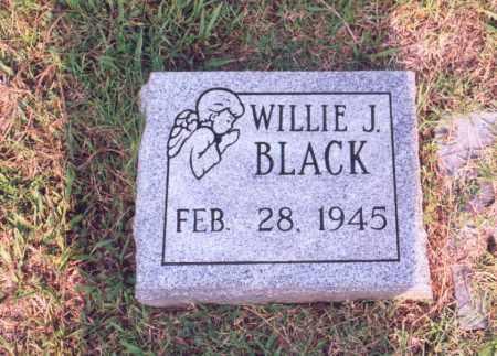 BLACK, WILLIE J. - Greene County, Arkansas   WILLIE J. BLACK - Arkansas Gravestone Photos