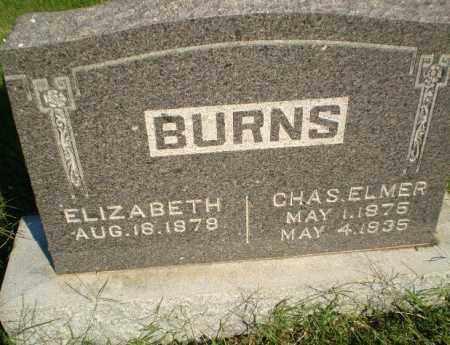 BURNS, CHAS ELMER - Greene County, Arkansas | CHAS ELMER BURNS - Arkansas Gravestone Photos