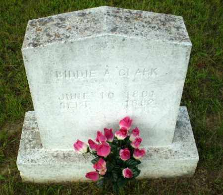 CLARK, BIDDIE A - Greene County, Arkansas   BIDDIE A CLARK - Arkansas Gravestone Photos