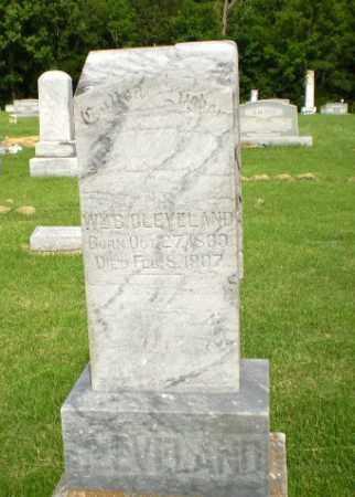 CLEVELAND, WM B - Greene County, Arkansas   WM B CLEVELAND - Arkansas Gravestone Photos