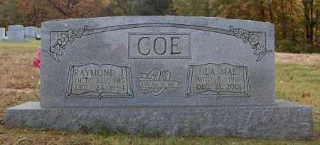 COE, RAYMOND J. - Greene County, Arkansas | RAYMOND J. COE - Arkansas Gravestone Photos