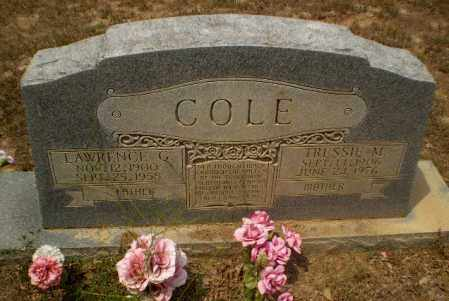COLE, TRESSIE M - Greene County, Arkansas | TRESSIE M COLE - Arkansas Gravestone Photos