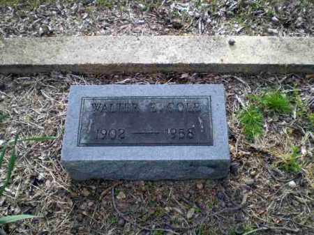 COLE, WALTER - Greene County, Arkansas   WALTER COLE - Arkansas Gravestone Photos